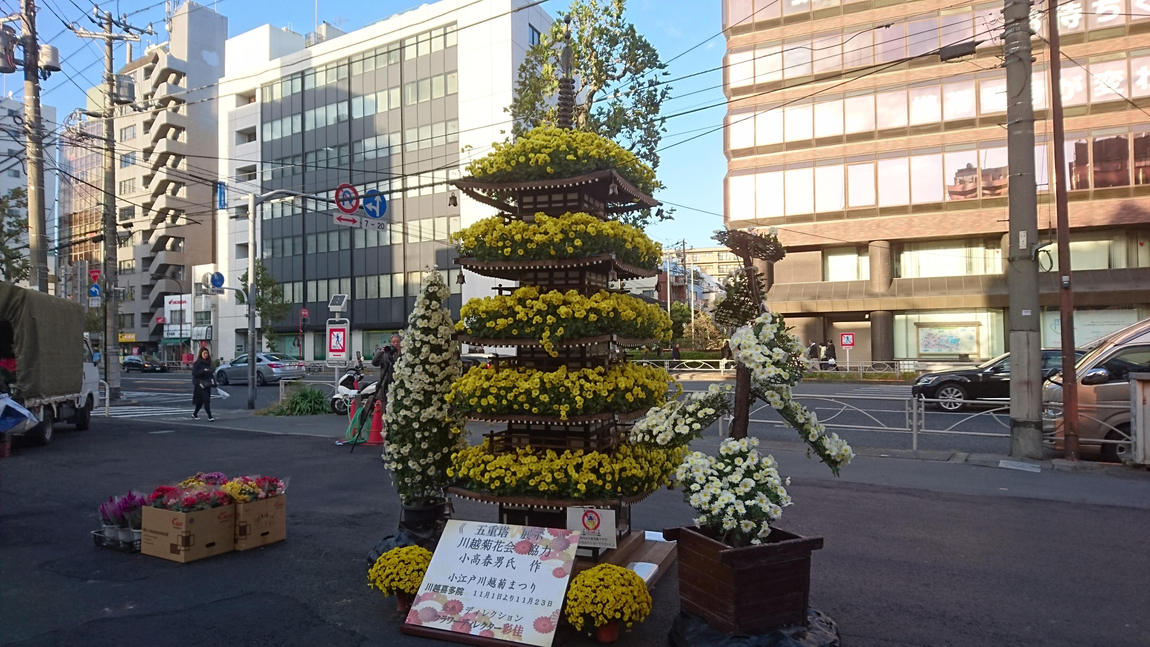 菊まつりすがもん広場